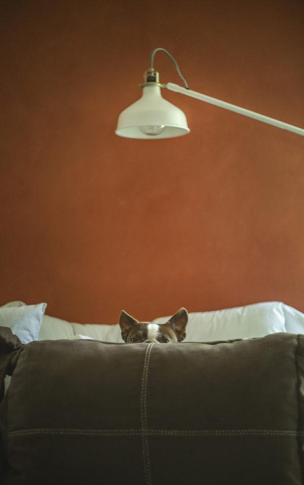 maria-perra-pillow-peek